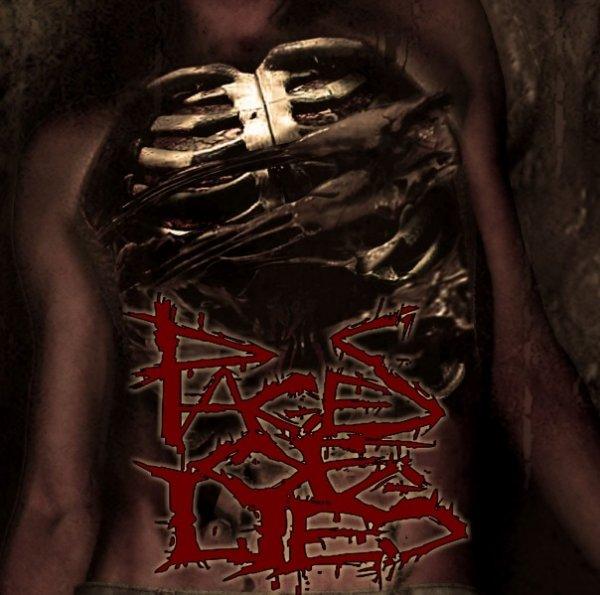 Nxkkx metalcore dancing slut fck authority