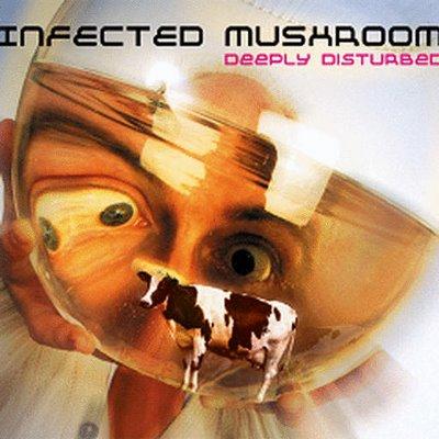 скачать торрент Infected Mushroom дискография - фото 8