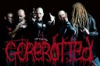 Gorerotted